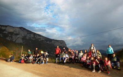 Naravoslovni tabor 7. razreda v Osilnici