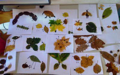 Praznik jeseni v gozdu